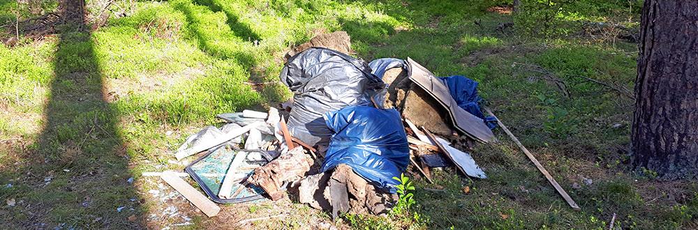 Sauerei: Müll im Hoppenwalder Wald