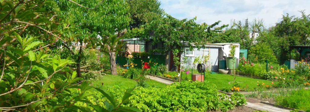 Wie geht es weiter mit unseren Kleingärten?