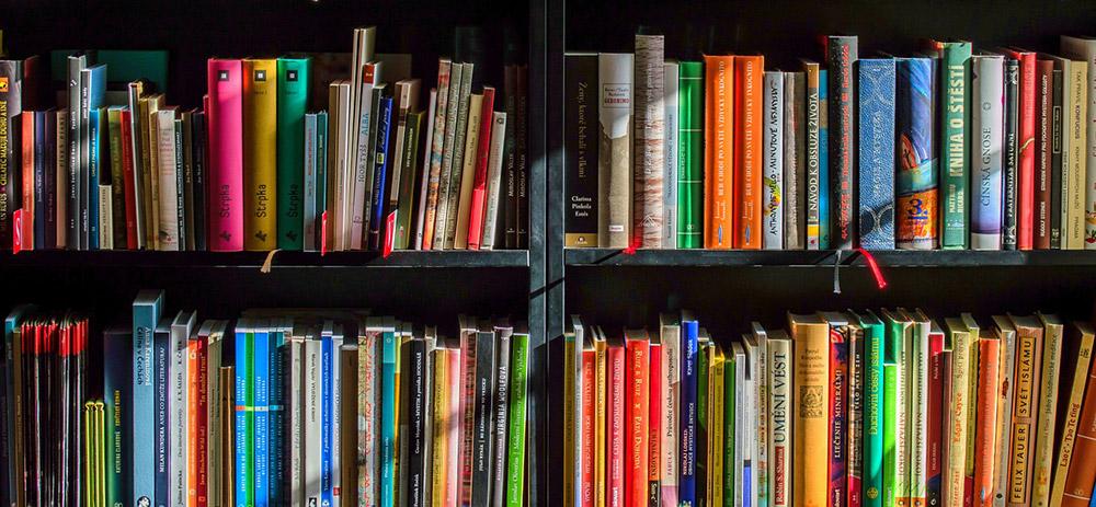 Lese–Club Ueckermünde macht weiter