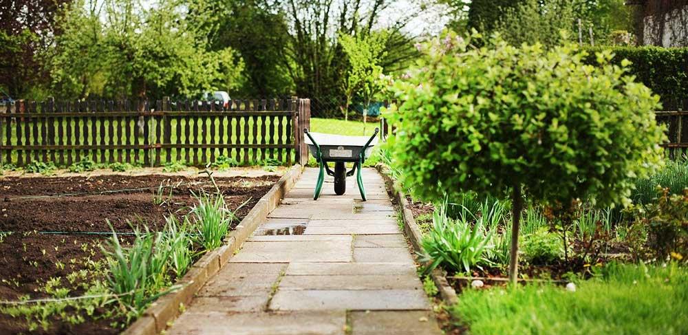 Gartenfreunde appellieren an Einhaltung der Regeln