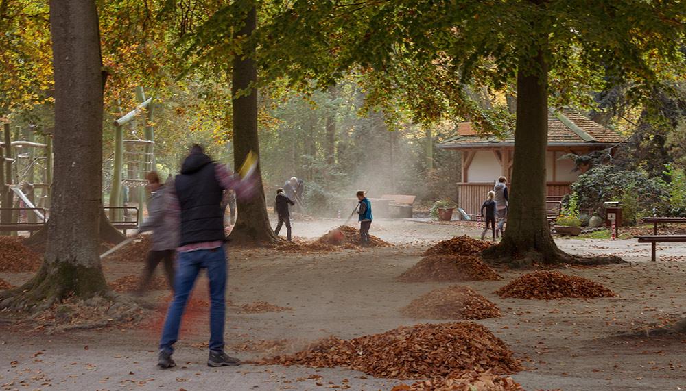 Ran an die Besen: Herbstputz im Haffzoo