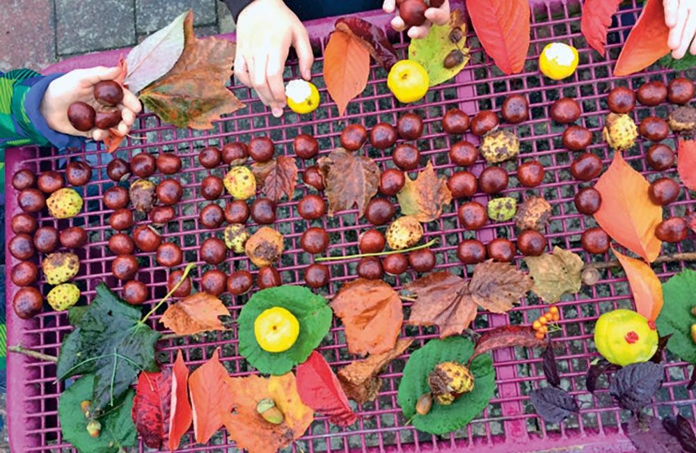 Macht mit! Herbstliche Sammelaktion für den Tierpark